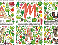 Original Seasonal Fruits and Vegetables illustration