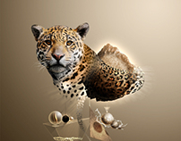 Jaguar The Legendary