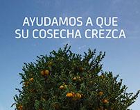 Bankia · Ayudas agricultura