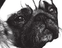 Pug Project