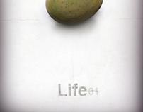 Life pt 1: The Organic Vessel