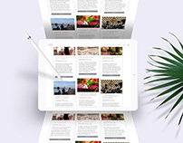 Thalya Events's Visual identity: website & brochure
