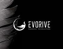 EVORIVE . Branding & Strategy