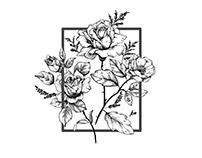 Hannah Rose Gray Photography Brand