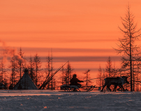 Sunset at camp of reindeer herders