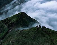 China-Cattle back mountain