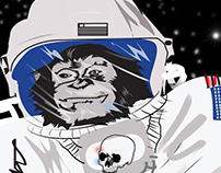 Chimpanzees in space