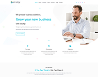 Landing Page Design Software Development Company