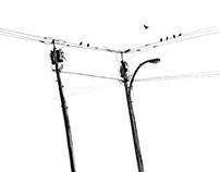 telephone pole sketch