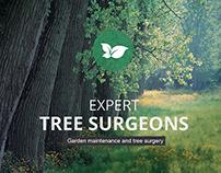 Lewis Tree Surgery