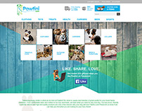 Pawtini Website Concepts