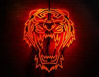 Asics - 'Wild and Rare'