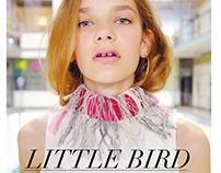 Little Bird 2016