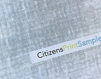 Citizens Project Book