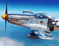 """""""Day Before"""" - F-6D Mustang over Nagasaki Prefecture"""