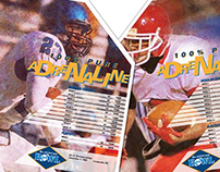 BlueCross Bowl Posters