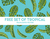 Free Download Set of Tropical Palm Leaves Vector