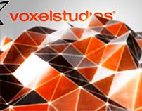 Opening VoxelStudios