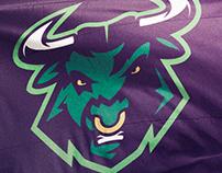 Bulls Potiguares