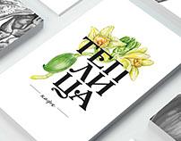 "Концепты логотипа для ""Теплица"""