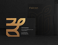 Falcon Logo & Branding