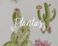 Plantinhas em Aquarela