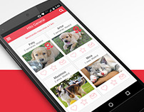 App Love And Pets