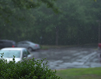 High Shutter Speed Picture of Rain