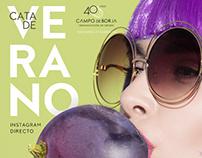 Cata de Verano (wine taste)
