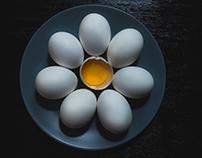 Eggs Photography