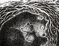 Bears at winter