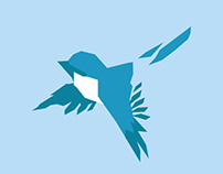 Blue Sparrow web studio Landing Page