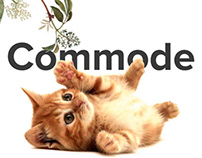 Commode-online store