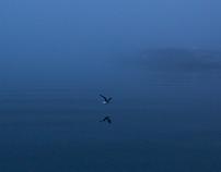 〈 Silence 〉 Photo series 2014-2018