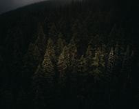 Mt. Whistler|惠斯勒山