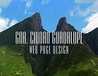 Gob. Ciudad Guadalupe Web Page Design