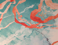 CLOUDS AND SALMON RIBBON - WALLPAINTING
