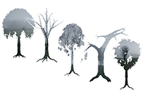 shapes of trees