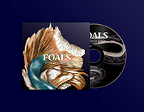 Foals (What Went Down)