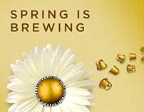 Nespresso Spring Campaign