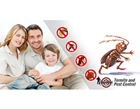 What should We See in a Pest Control Provider