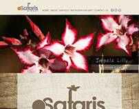 Safaris Direct Website