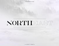NorthEast - 4 serif fonts