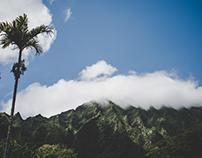Oahu: Ho'omaluhia Botanical Gardens