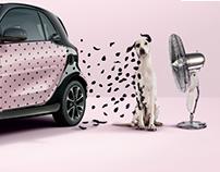 smart | ad campaigns