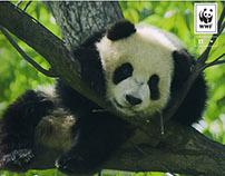 Cornèrcard WWF