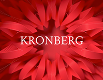 The Secret of Kronberg