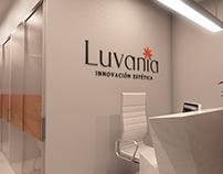 Visualizacion para propuesta de marca luvania