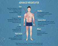 Muscle-Building Anatomy Illustation