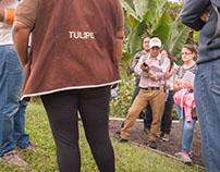 Salida de campo: Museo de sitio Tulipe